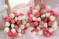 Wedding Bouquets Of Beautiful Tulips